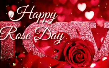 Rose Day Whatsapp Status video Download