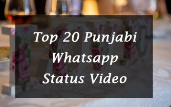 20+ Punjabi Whatsapp Status Video Download